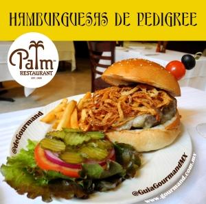 H P   Palm second image