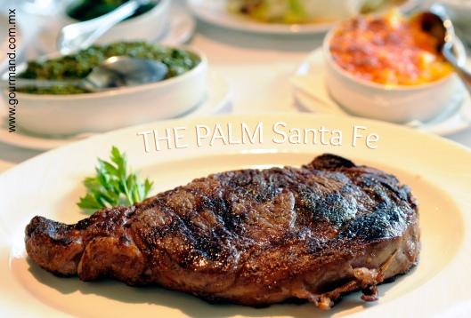 The palm Santa Fe -1