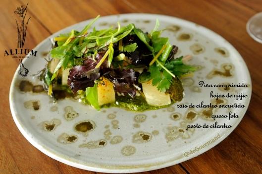 Allium ensalada -9