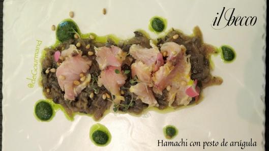 Hamachi -2