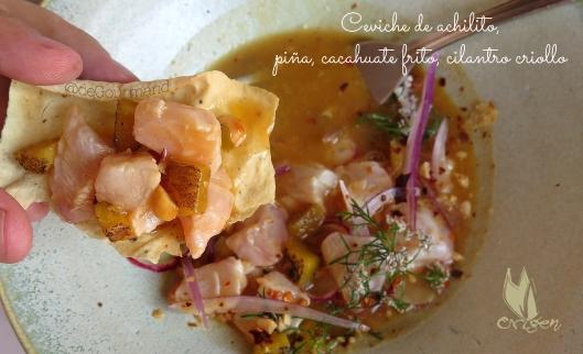 ORIGEN Ceviche de pargo -3