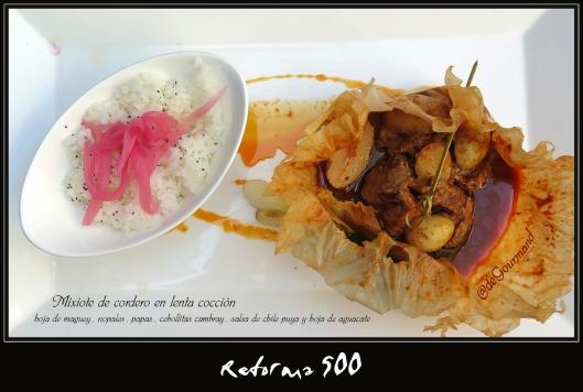 REFORMA 500 mixote -6