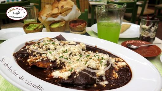 CAFE CASA OAXACA enchiladas de mole -4