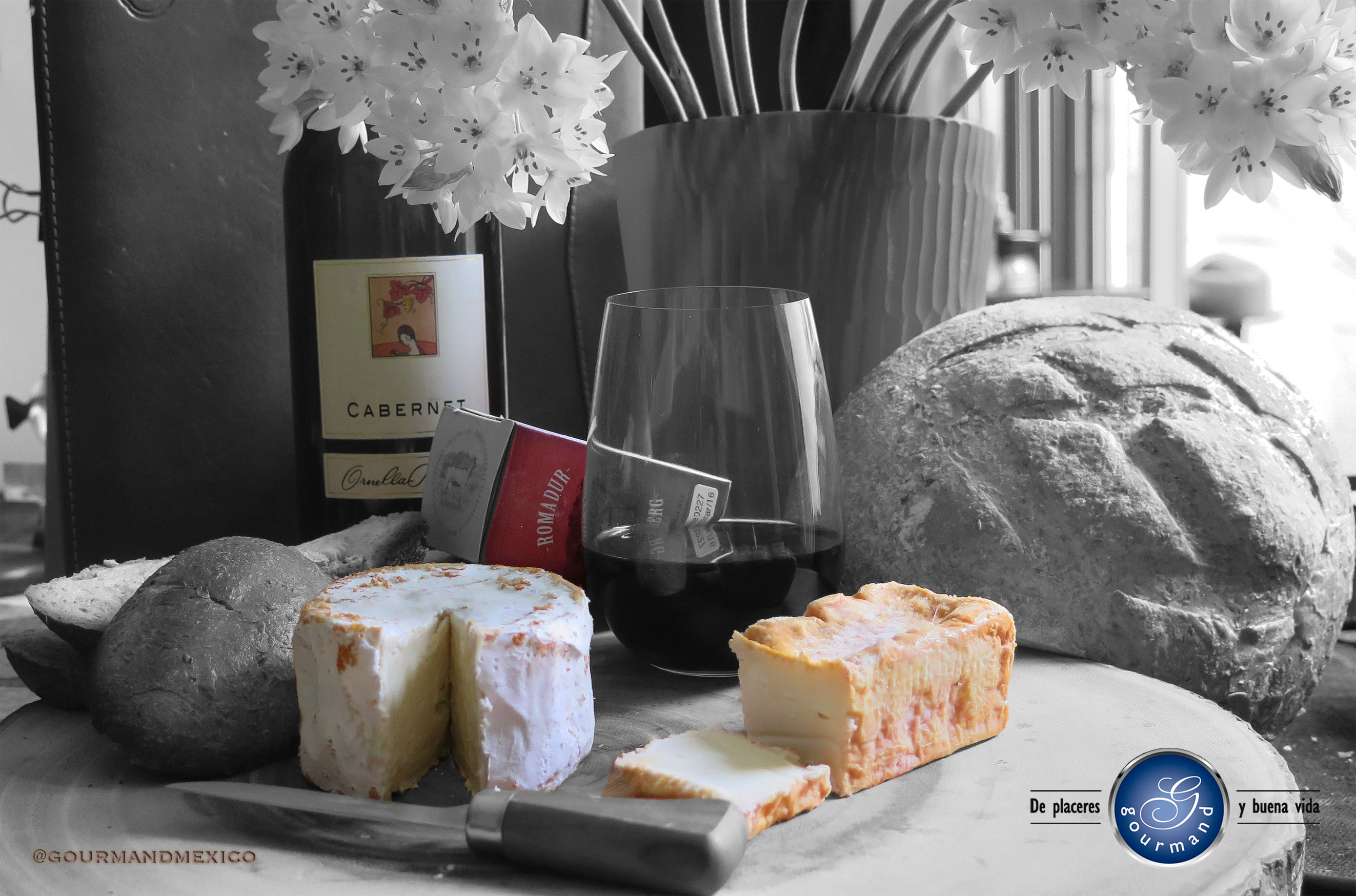 ¿Saben qué? comer queso mejora la salud y es una costumbre deliciosa